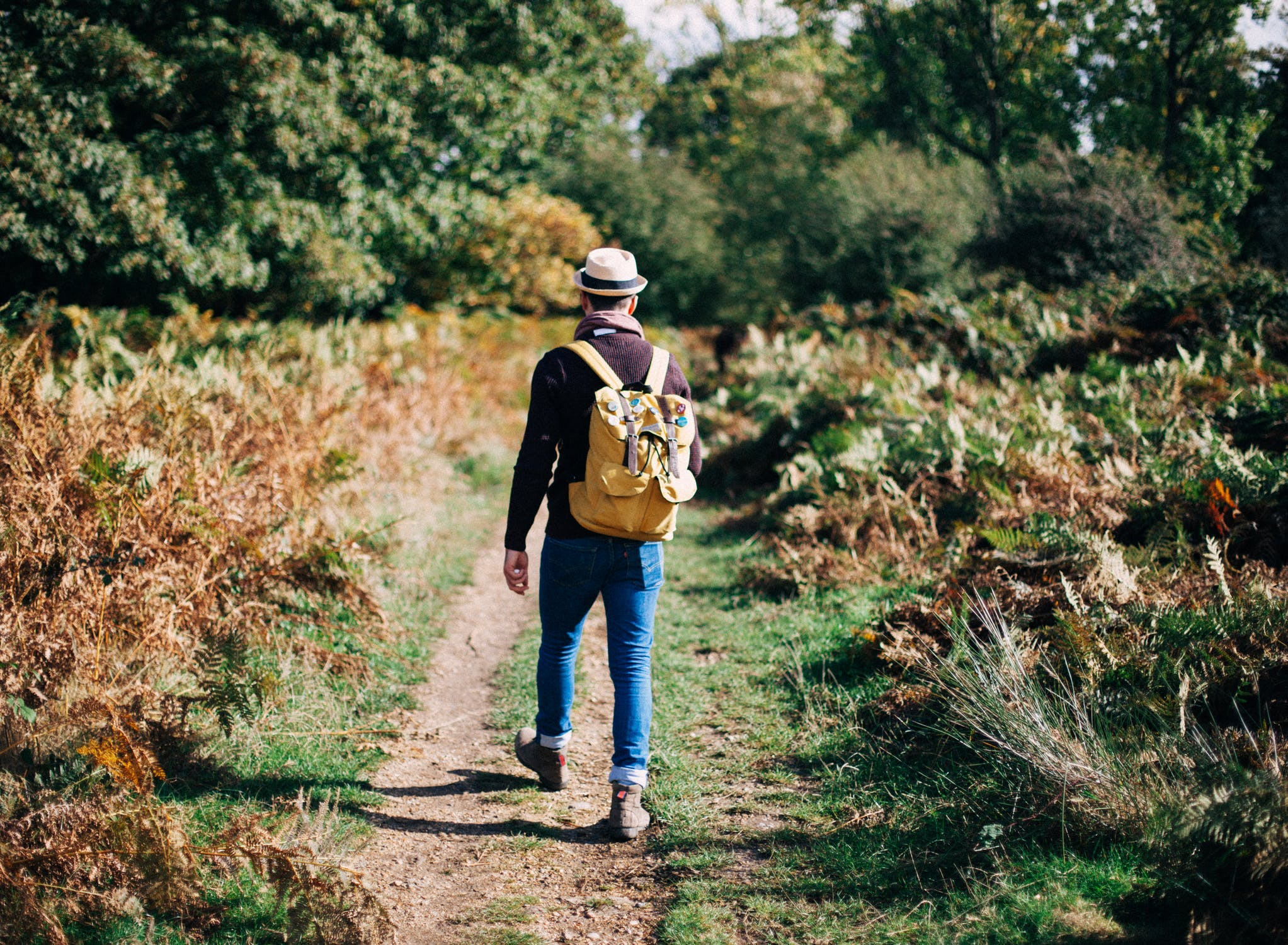 The Top 10 UK Walking Blogs 2017